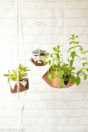 DIY projects for your garden