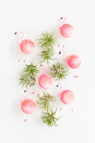 DesignJoyBlog_6 DIY Gifts for your Mum_Flamingo Macarons
